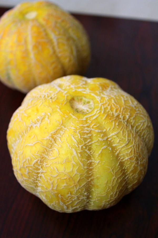 muskmelon fruit